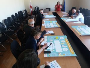 WASH Councils were Established in Kvemo Kartli